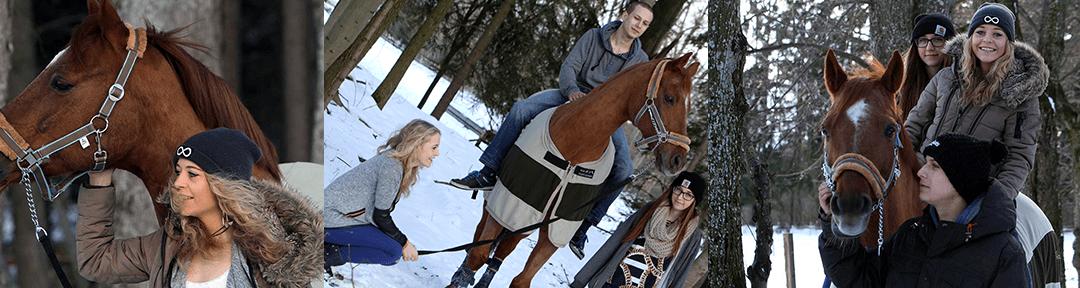 Drei Freunde und ein Pferd am Ammersee