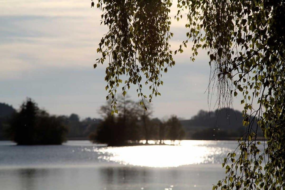 Der Seehamer See