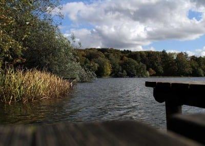 Der Wesslinger See