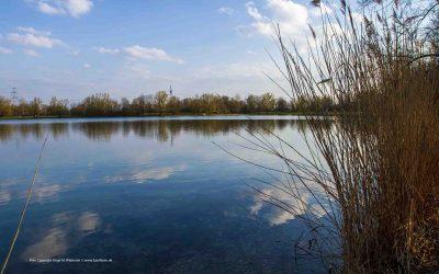 Wanderung zwischen Feringasee Johanneskirchen und Ascheim