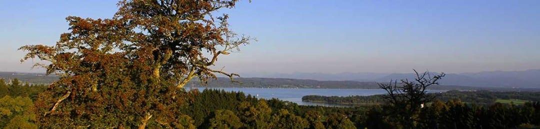 Wandertipp Starnberger See hier der Blick vo der Ilkahöhe Richtung Starnberger See
