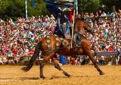 Pferd mit Reiter beim Kaltenberger Ritterturnier