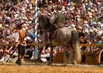 Pferd und Publikum Kaltenberger Ritterturnier