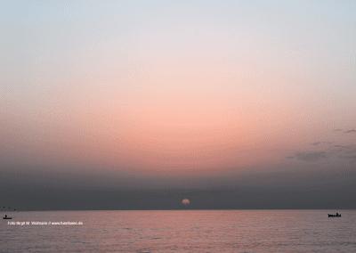 arcana – Natursprechstunde