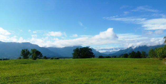 Neuigkeiten aus dem Alpenhof Murnau