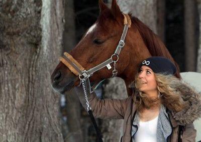 Pferde in Dießen sind eine beliebte Freizeitbeschäftigung der Einheimischen