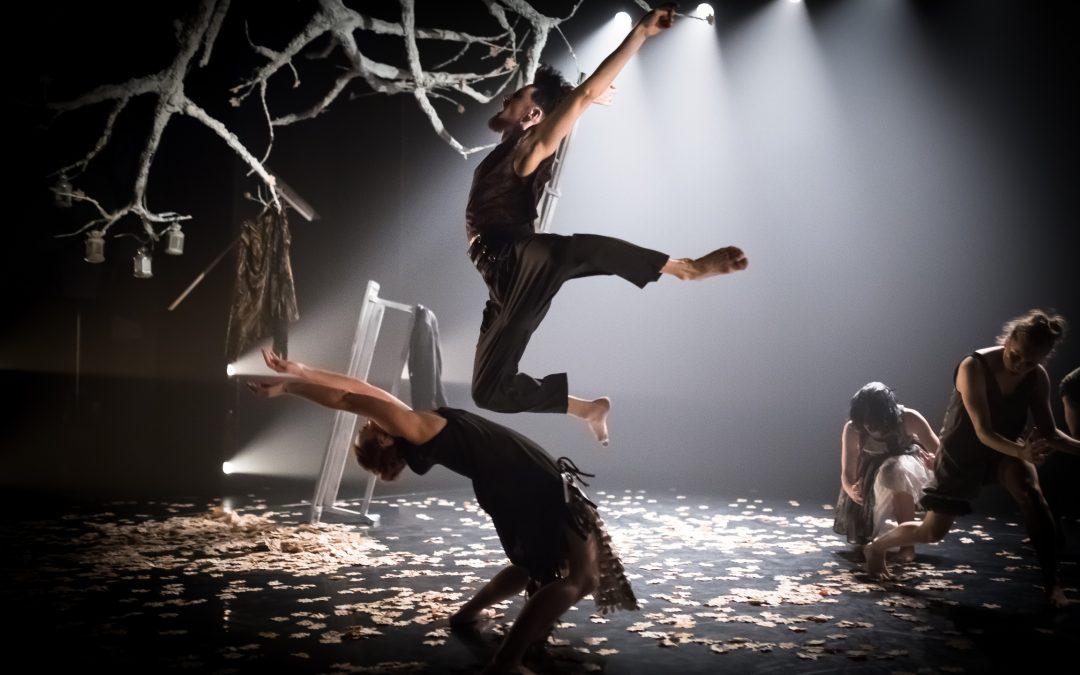 dance first – großer Erfolg