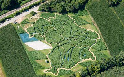 Im Labyrinth durch Bayern