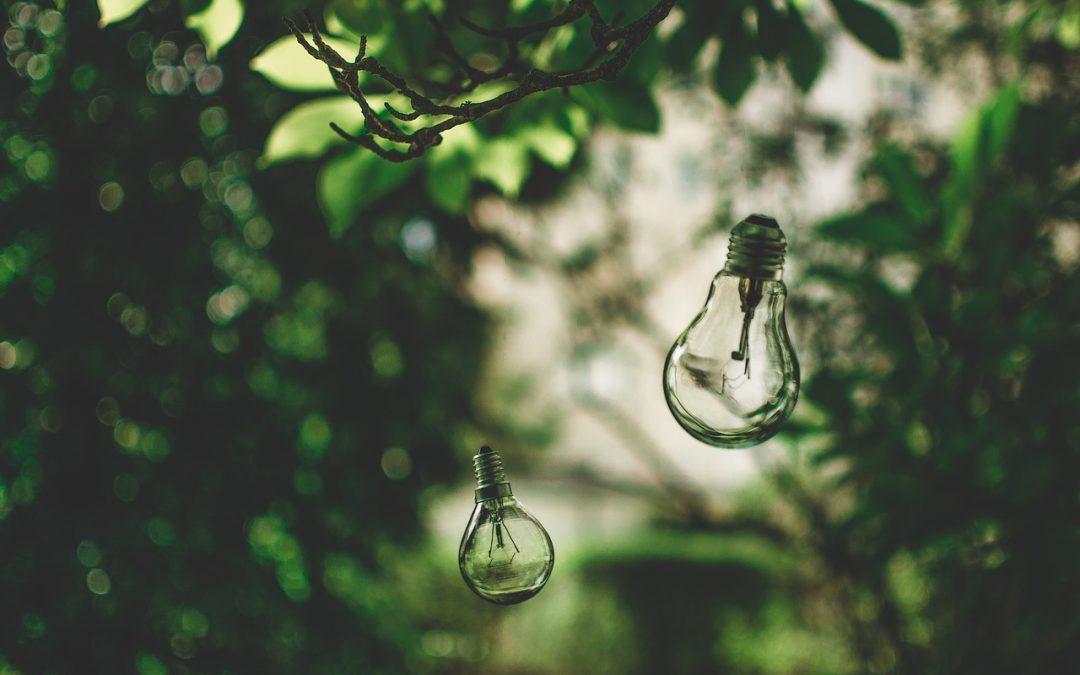 Earth Hour – eine Stunde für die Umwelt