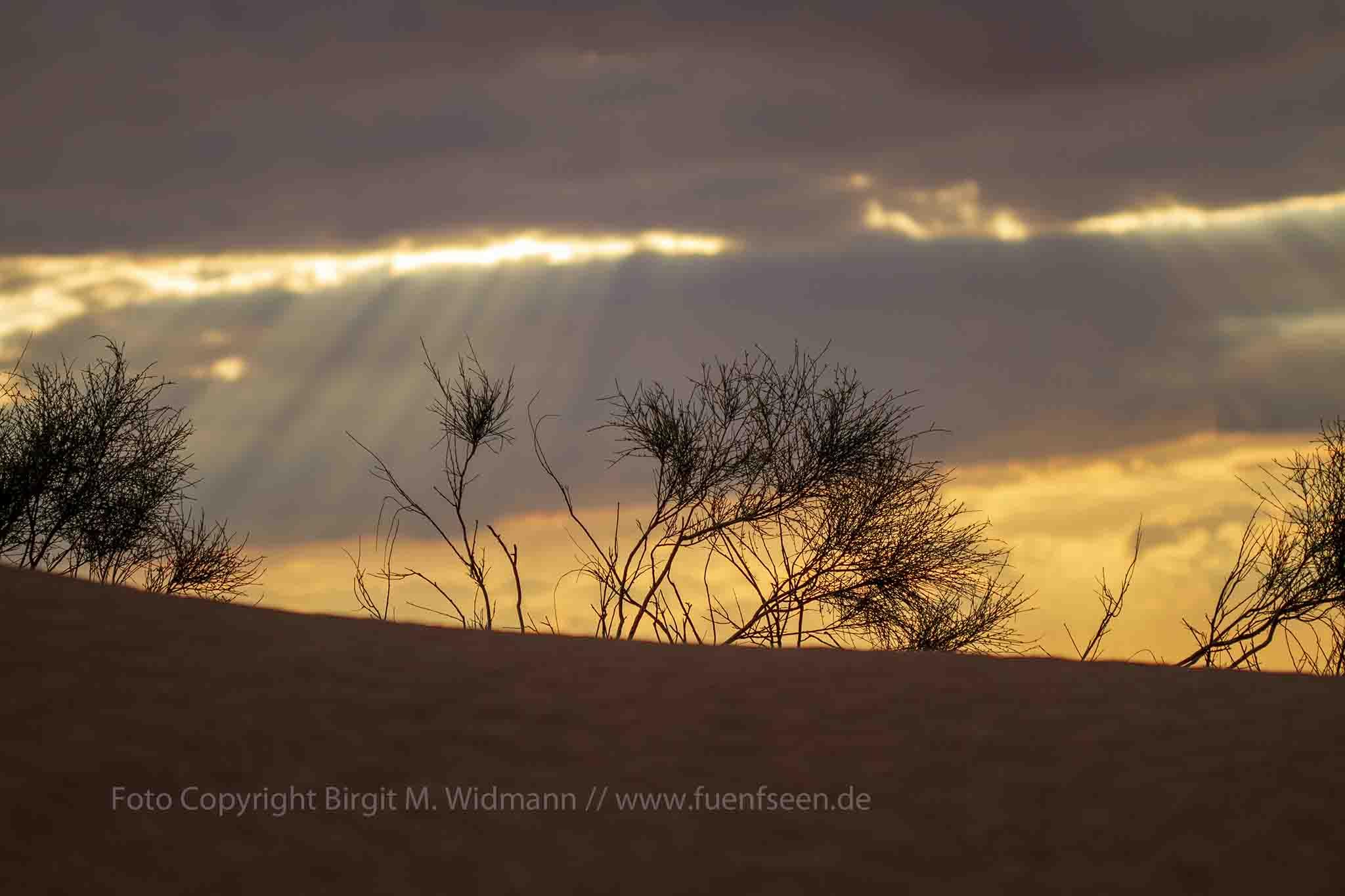 Sahara Wanderung