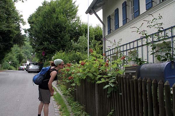 RW24 Rad- und Wanderweg Leutstetten