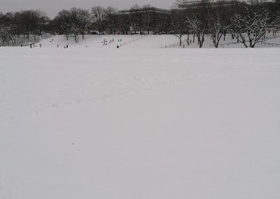 Die Theresienwiese im Schnee
