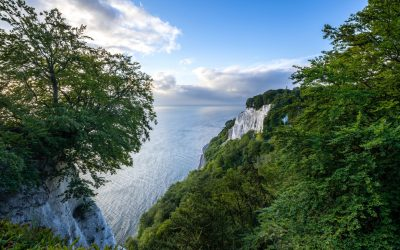 10 Jahre UNESCO Welterbe Alte Buchenwälder in Mecklenburg Vorpommern